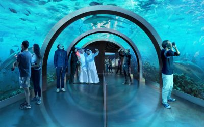 Project Case Study: Bahrain Aquarium and Underwater Zoo